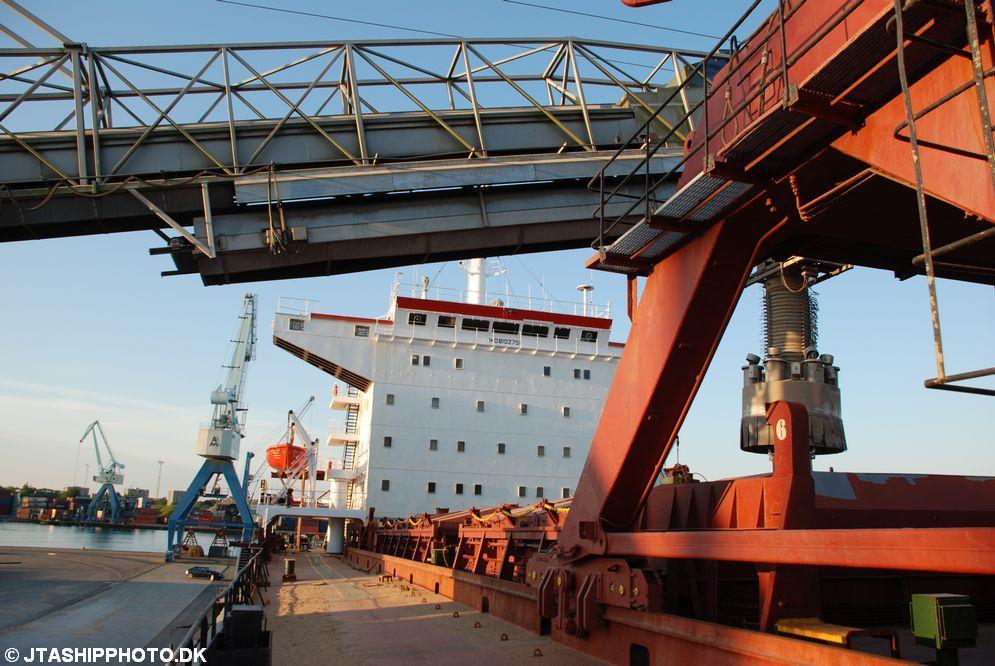 Hamburg Pearl (12)
