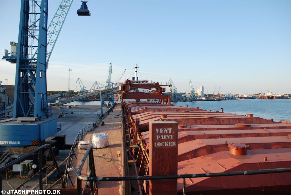 Hamburg Pearl (14)